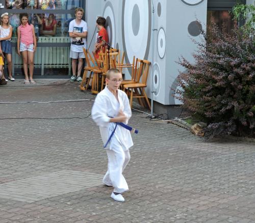ZAHRADNÍ SLAVNOST 23. ČERVNA 2017 - ŠKOLNÍ ZAHRADA